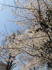 石神 瑤生子 公式ブログ/花園神社 画像2