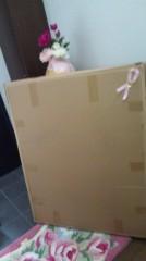 奈々子 公式ブログ/大きな箱☆ 画像1
