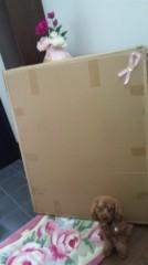 奈々子 公式ブログ/大きな箱☆ 画像2