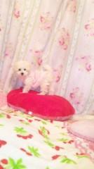奈々子 公式ブログ/ローズマリーちゃん☆ 画像1