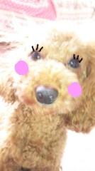 奈々子 公式ブログ/コムギーニもお化粧したのよ☆ 画像1