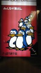 岡和田美沙 公式ブログ/ペンギン 画像1