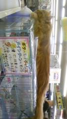岡和田美沙 公式ブログ/にゃん 画像1