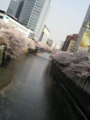末永みゆ 公式ブログ/☆桜☆ 画像3