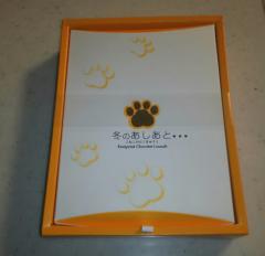 ザ・グレート サスケ 公式ブログ/かくれんぼする猫ってご存知? 画像2