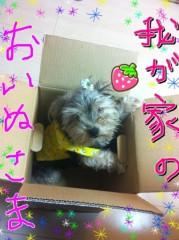 中村円香 公式ブログ/我が家のおいぬ様 画像1