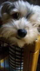 中村円香 公式ブログ/母親から写メ送られてきましたww 画像1