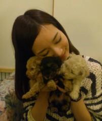 ななみ 公式ブログ/犬の赤ちゃんU^q^U 画像1