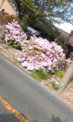 小田万音里 公式ブログ/5月かぁ 画像1