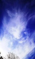 沙人 プライベート画像/日常心動風景 龍の咆哮