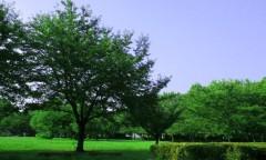 沙人(しゃと) プライベート画像 41〜60件 青と蒼