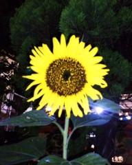 沙人(しゃと) 公式ブログ/銀河鉄道の夜の太陽のそばに悪党(笑) 画像2