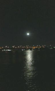 水面の月紋