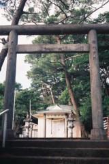 沙人(しゃと) 公式ブログ/三十年目の恐怖。。in奄美 画像2