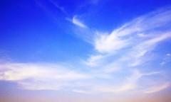 沙人(しゃと) プライベート画像 41〜60件 翔龍