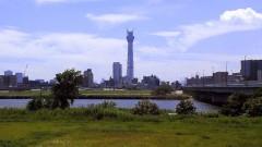 沙人 プライベート画像/撮影便り(2010/8/7)藤井組 荒川から望む東京スカイツリー
