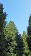 中ゆうこ 公式ブログ/光と陰と青い空。 画像1
