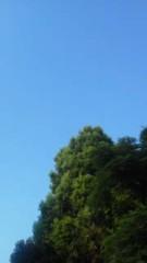 中ゆうこ 公式ブログ/夕方のお空 画像1