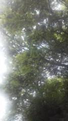 中ゆうこ 公式ブログ/曇り空 画像2