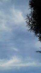 中ゆうこ 公式ブログ/寒空PART1 画像1