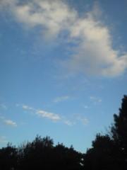 中ゆうこ 公式ブログ/今日はいいお天気でした 画像1