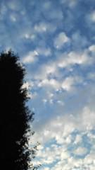 中ゆうこ 公式ブログ/この雲 画像1