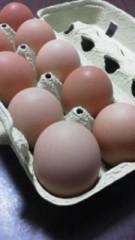中ゆうこ 公式ブログ/美味しい卵 画像1