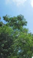 中ゆうこ 公式ブログ/夏空 画像1