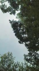 中ゆうこ 公式ブログ/なんか空がどんよりしてきた 画像2