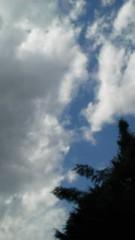 中ゆうこ 公式ブログ/風が気持ちいい 画像1