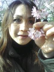 妃羽理 公式ブログ/お花見 画像3