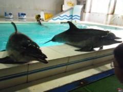 西澤桃子 公式ブログ/おたる水族館 画像1