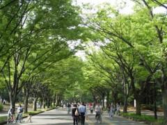 井坂聡 プライベート画像/散歩 013