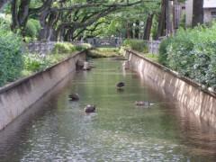 井坂聡 公式ブログ/お散歩! 画像2