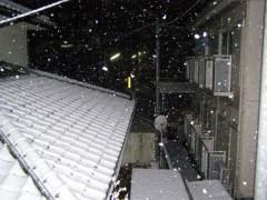 井坂聡 公式ブログ/雪ですね! 画像1