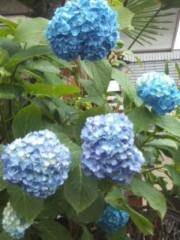 井坂聡 公式ブログ/街が濡れている 画像1