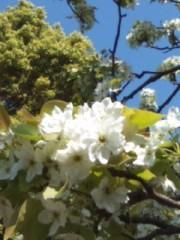 井坂聡 公式ブログ/生きている喜び 画像2
