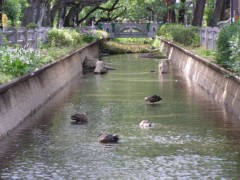 井坂聡 プライベート画像/散歩 014