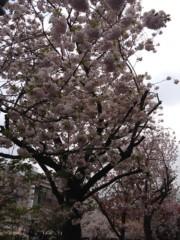 井坂聡 公式ブログ/ご当地ネタですが(^-^)/ 画像3