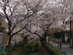 井坂聡 公式ブログ/巣立ち 画像1