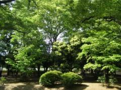 井坂聡 プライベート画像/散歩 012