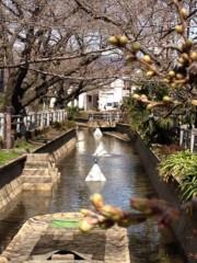 井坂聡 公式ブログ/春はそこまで(^-^)/ 画像1