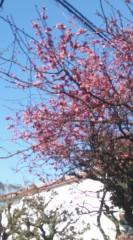 井坂聡 公式ブログ/2011-02-22 13:06:36 画像1