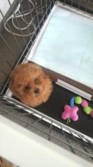 北川富紀子 公式ブログ/luv!!!!★ 画像1