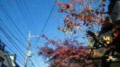鈴木淳(しながわてれび出演者blog) 公式ブログ/今日の品川区 画像1