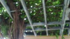 鈴木淳(しながわてれび出演者blog) 公式ブログ/にわか雨! 画像2