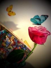逢沢 莉緒 公式ブログ/大好きなお花☆ 画像1