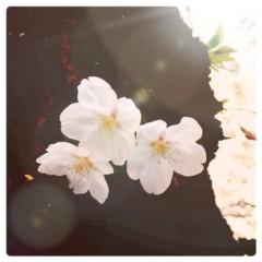 逢沢 莉緒 公式ブログ/久しぶりの更新! 画像3