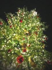 逢沢 莉緒 公式ブログ/クリスマス☆ 画像1