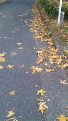 栃尾昌 公式ブログ/紅葉を見て高揚。 画像2